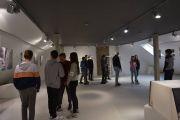 DSC9387-galeria-1200-1200Q72